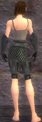 Warrior Elite Platemail armor f gray back arms legs.jpg