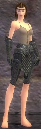 Warrior Elite Platemail armor f gray front arms legs.jpg