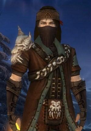 Druid Build Guild Wars