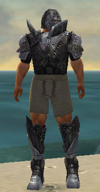 Warrior Elite Platemail armor m gray front chest feet.jpg