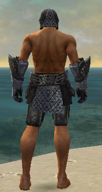 Warrior Elite Platemail armor m gray back arms legs.jpg