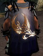 Guild Guild Of Dragon And Phoenix cape.jpg