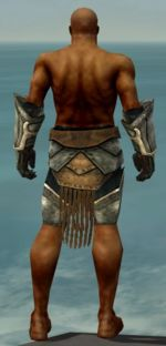 Warrior Sunspear armor m gray back arms legs.jpg