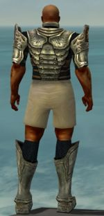 Warrior Sunspear armor m gray back chest feet.jpg