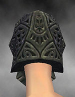 Warrior Elite Platemail armor f gray back head.jpg