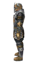 Warrior Elite Templar armor m dyed left.jpg