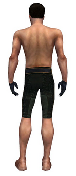Mesmer Elite Sunspear armor m gray back arms legs.png