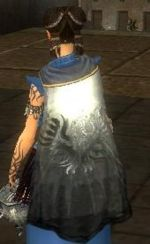 Guild Medieval Knights Of Darkness cape.jpg