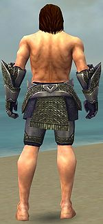 Warrior Platemail armor m gray back arms legs.jpg