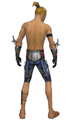 Assassin Monument armor m gray back arms legs.png