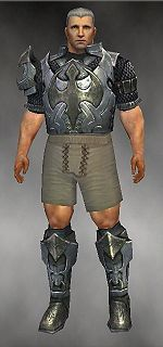 Warrior Elite Templar armor m gray front chest feet.jpg