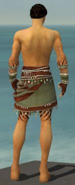 Ritualist Exotic armor m gray back arms legs.jpg