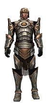 Warrior Sunspear armor m.jpg