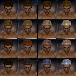 Paragon nightfall hair color m.jpg