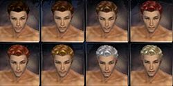 Mesmer factions hair color m.jpg