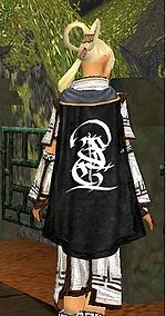 Guild The Enternal Darkness cape.jpg