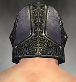 Warrior Platemail armor m gray back head.jpg