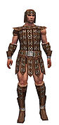 Warrior Ascalon armor m.jpg