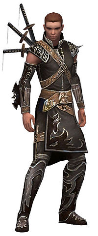 Anton brotherhood armor.jpg
