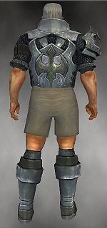 Warrior Elite Templar armor m gray back chest feet.jpg
