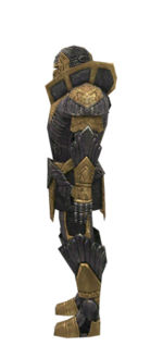 Warrior Elite Platemail armor m dyed left.jpg