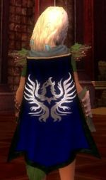 Guild Childrens Of Raven cape.jpg