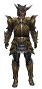 Warrior Wyvern armor m.jpg