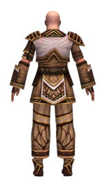 Monk Elite Canthan armor m dyed back.jpg