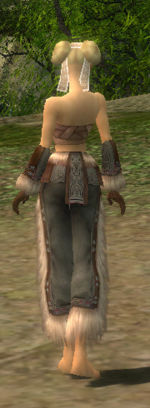 Monk Norn armor f gray back arms legs.jpg