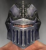 Warrior Platemail armor m gray front head.jpg