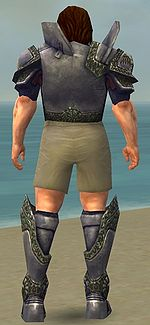 Warrior Platemail armor m gray back chest feet.jpg