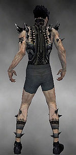 Necromancer Obsidian armor m gray back chest feet.jpg