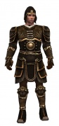 Warrior Shing Jea armor m.jpg