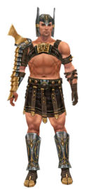 Warrior Elite Gladiator armor m.jpg