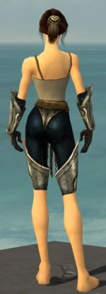 Warrior Sunspear armor f gray back arms legs.jpg