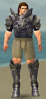 Warrior Platemail armor m gray front chest feet.jpg
