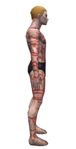 Necromancer Scar Pattern armor m dyed right.jpg