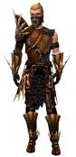 Ranger Elite Sunspear armor m.jpg