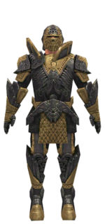 Warrior Elite Platemail armor m dyed front.jpg