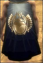 Guild Angelic Warriors cape.jpg