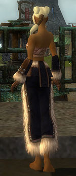Monk Norn armor f black back arms legs.jpg