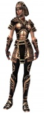 Warrior Ancient armor f.jpg