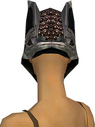 Warrior Elite Kurzick armor f gray back head.jpg