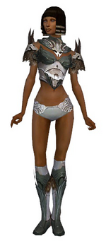 Paragon Norn armor f gray front chest feet.png