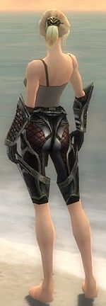 Warrior Elite Kurzick armor f gray back arms legs.jpg