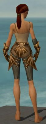 Ranger Sunspear armor f gray back arms legs.jpg