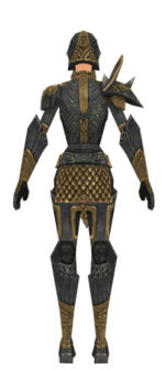 Warrior Elite Platemail armor f dyed back.jpg