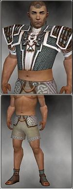 Monk Elite Judge armor m gray front chest feet.jpg