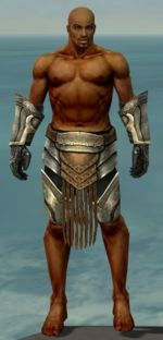 Warrior Sunspear armor m gray front arms legs.jpg