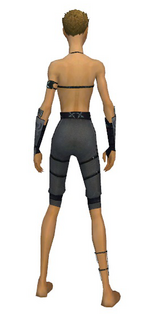 Assassin Shing Jea armor f gray back arms legs.png
